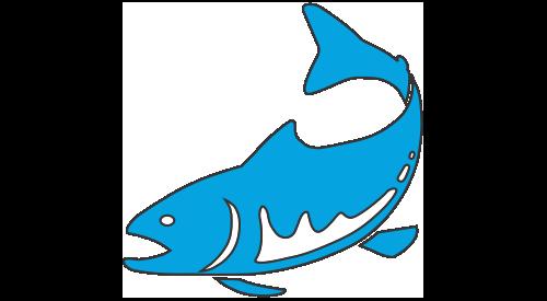 Pisces Environmental